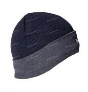Шапка Thinsulate Cap blue